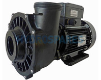 Waterway Executive 56F Spa Pump - 3HP - 2 Speed - 2.5 x 2