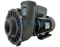 Waterway Executive 56F Spa Pump - 2.5HP - 2 Speed - 2.5 x 2