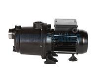 Sta-Rite EVO Boost-Rite Boost Pump