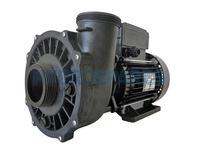 Waterway Executive 56F Spa Pump - 2HP - 2 Speed
