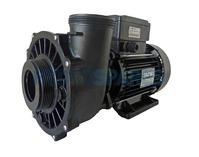 "Waterway Executive 56F Spa Pump - 3HP - 1 Speed - 2 ½"" x 2"""