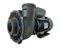 "Waterway Executive 56F Spa Pump - 2 ½HP - 2 Speed - 2 ½"" x 2"""