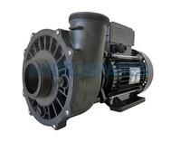 Waterway Executive 56F Spa Pump - 2 ½HP - 2 Speed