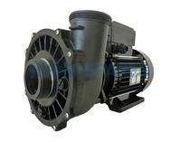 Waterway Executive 48F Spa Pump - 2HP - 2 Speed