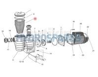 Strainer Basket SPAQ35