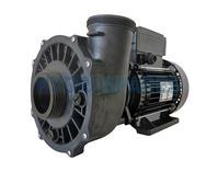 "Waterway Executive 56F Spa Pump - 3HP - 2 Speed - 2 ½"" x 2"""