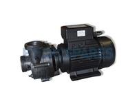 Balboa Niagara Spa Pump - 2HP - 2 Speed