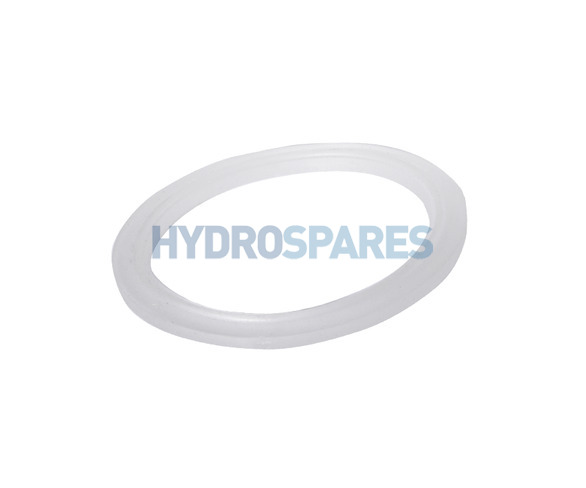 Waterway Jet Body Flat Gasket