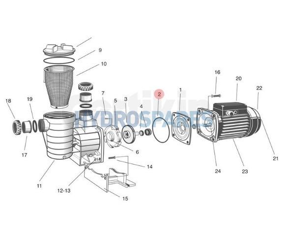 Main Body O-Ring - SPAQ19