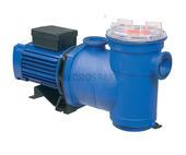 Argonaut Pump - AV250-2DN-S (Single Phase)