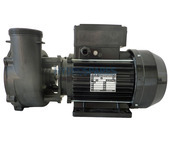 Waterway Executive 56F Spa Pump - 2.0HP - 2 Speed - 2 x 2