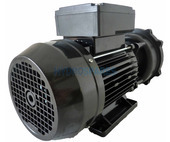 Waterway Executive 56F Spa Pump - 2.5HP - 2 Speed - 2.5 x 2