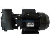 Waterway Executive 48F Spa Pump - 2.0HP - 1 Speed - 2.5 x 2