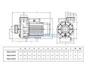Espa Wiper3 200M 2P4P Spa Pump - 2.0HP - 2 Speed