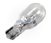 Filament Light Bulb -12V