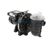 Sta-Rite S5P2R Single Phase Pump